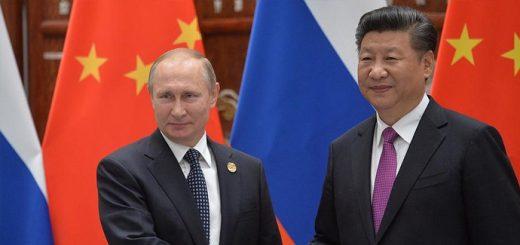 С Председателем Китайской Народной Республики Си Цзиньпином. Фото: kremlin